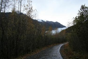374-Exit Glacier