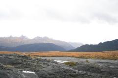 415-Exit Glacier