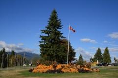 677-Burnbay Park